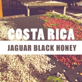 Kostarika Jaguar Black Honey 250g